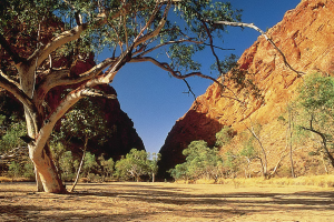 Outback Australia: The Colour of Red | Simpsons Gap, West MacDonnell Ranges, Central Australia, Northern Territory