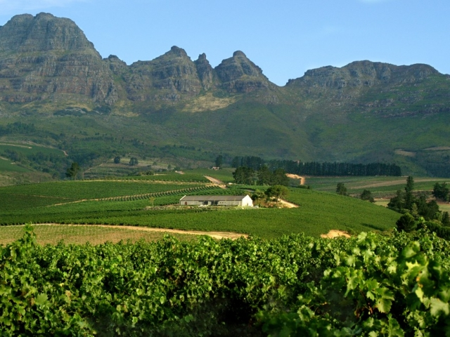 Grand Tour of South Africa, Cape Winelands
