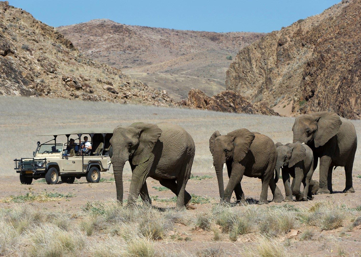Diverse Namibia, Damaraland