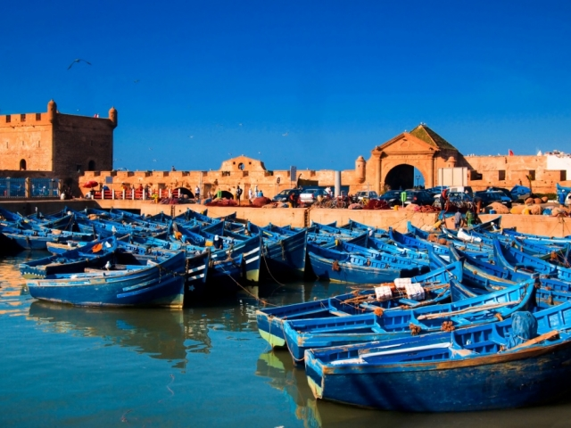 Essaouira & Marrakesh, Essaouira, Fishing Port