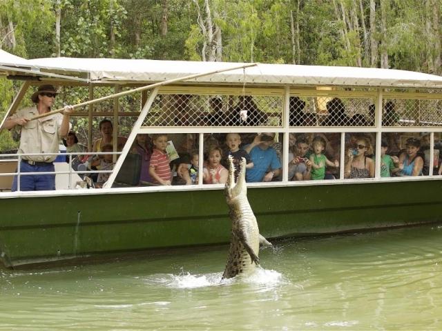 Queensland Tropical Trails, Hartley's Crocodile Adventures