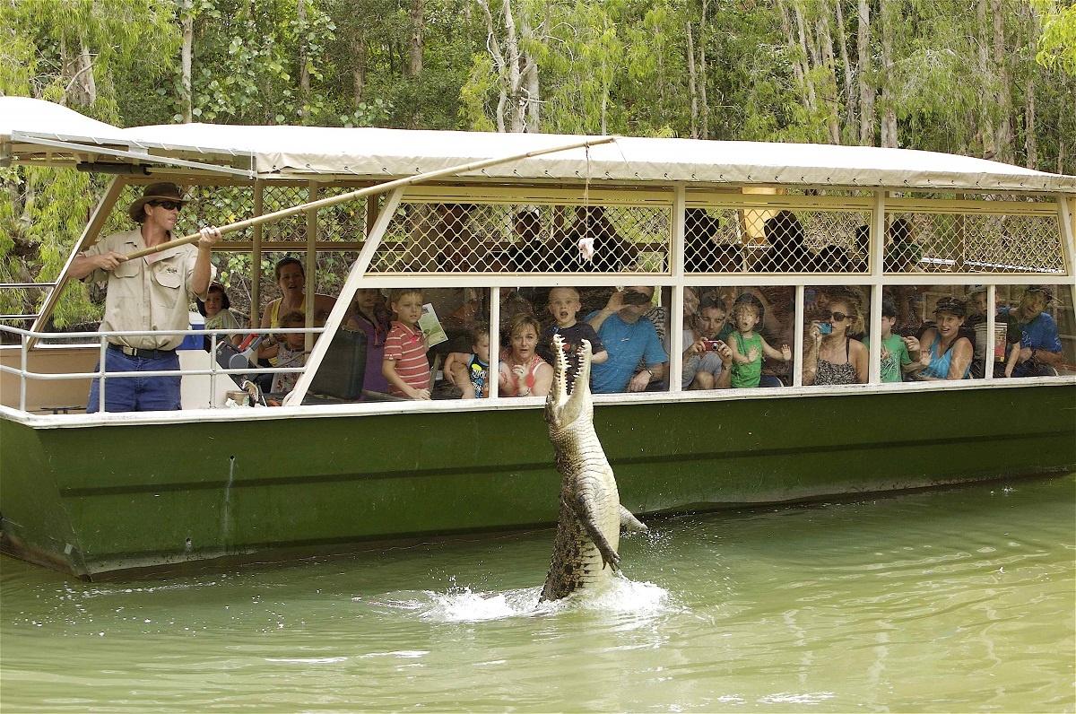Tropical Trails | Hartley's Crocodile Adventures, Wangetti, Queensland