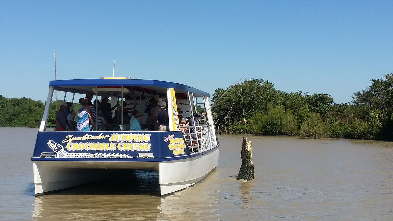 Kakadu and Katherine Gorge, Jumping Crocodile Cruise