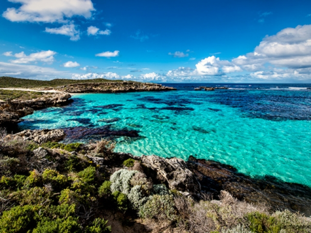 Perth & Rottnest Island, Rottnest Island