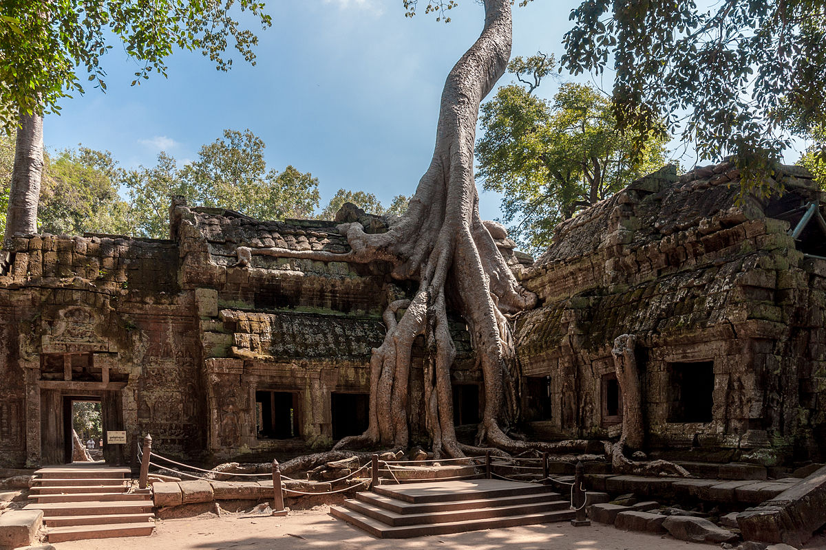 Siem Reap & The Khmer Legacy, Ta Prohm Temple