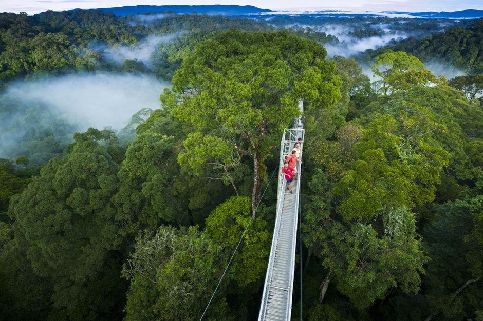 Borneo Wildlife Discoverer, Danum Valley Conservation Area