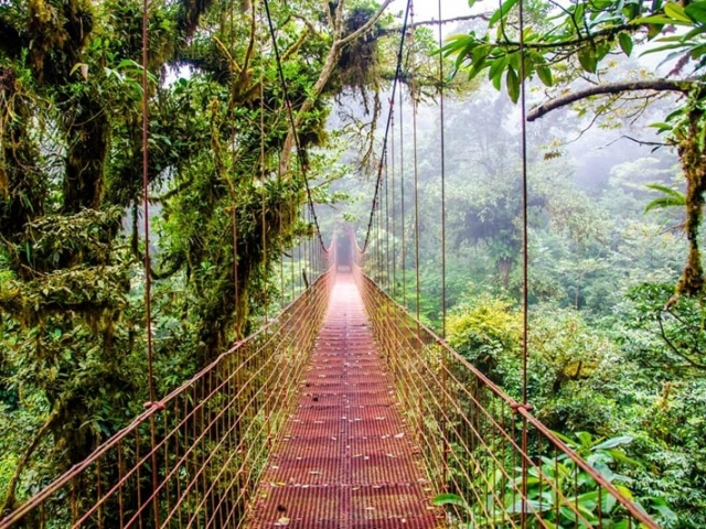 Costa Rica Eco Adenture | Arenal Hanging Bridges