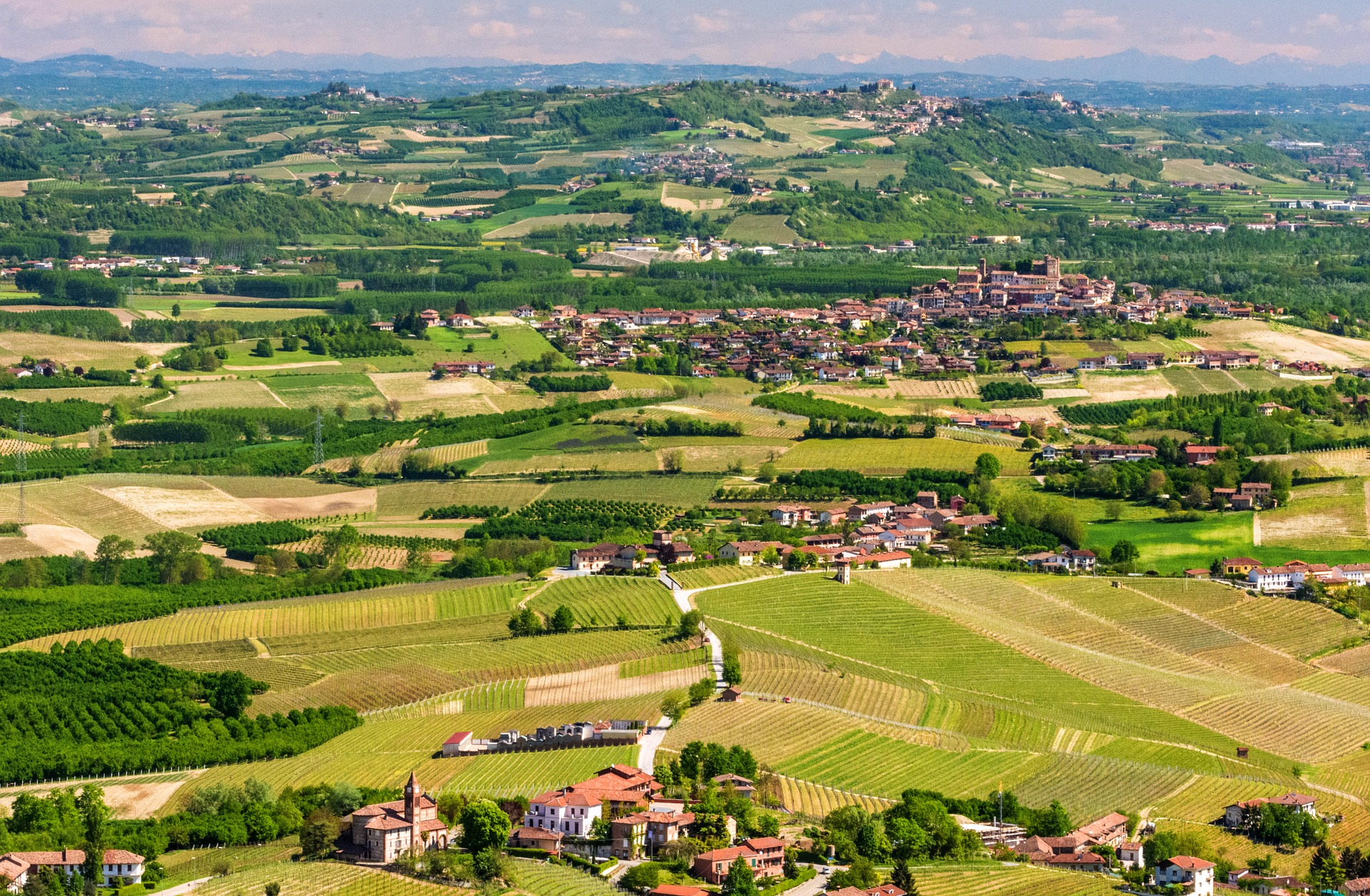 Piedmont: Food, Wine & Truffles - Langhe, italy