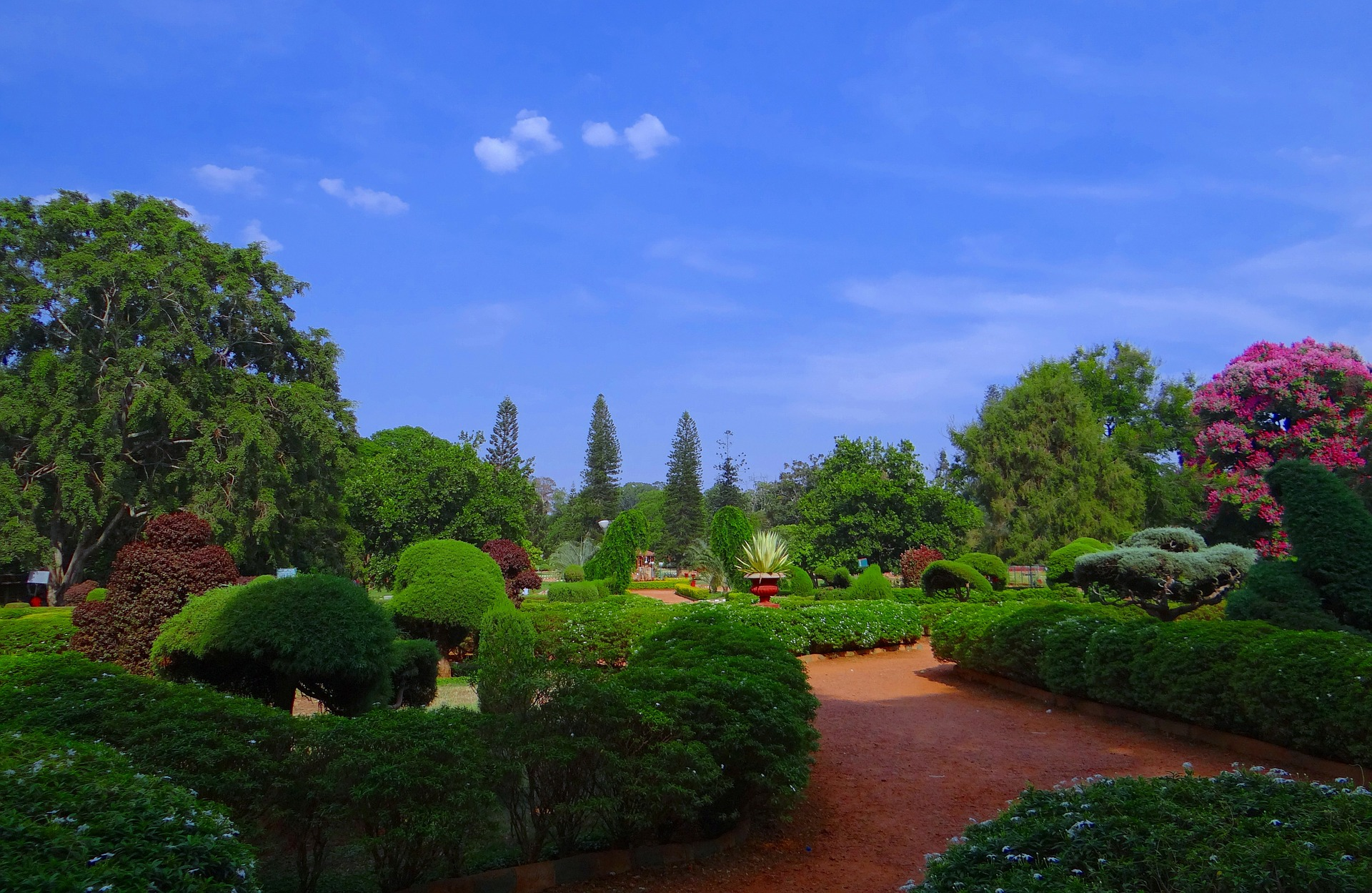 Grand Discovery of India - Botanical Garden, Bangalore, India