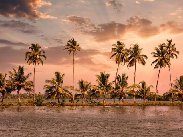 Colours of South India - Kumarakom, India