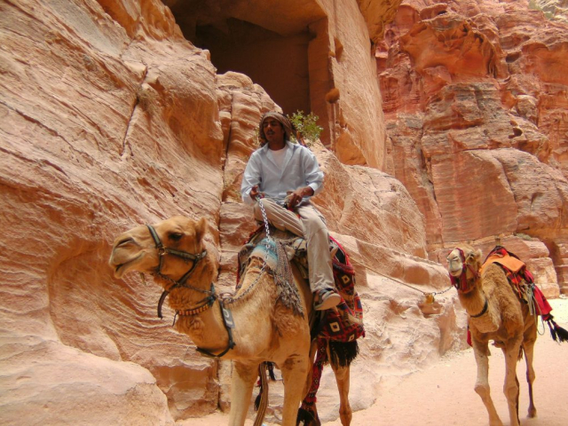 Essential Petra - Camel ride through Petra, Jordan