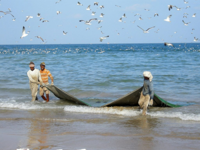 Experience Salalah - Fishermen, Salalah, Oman