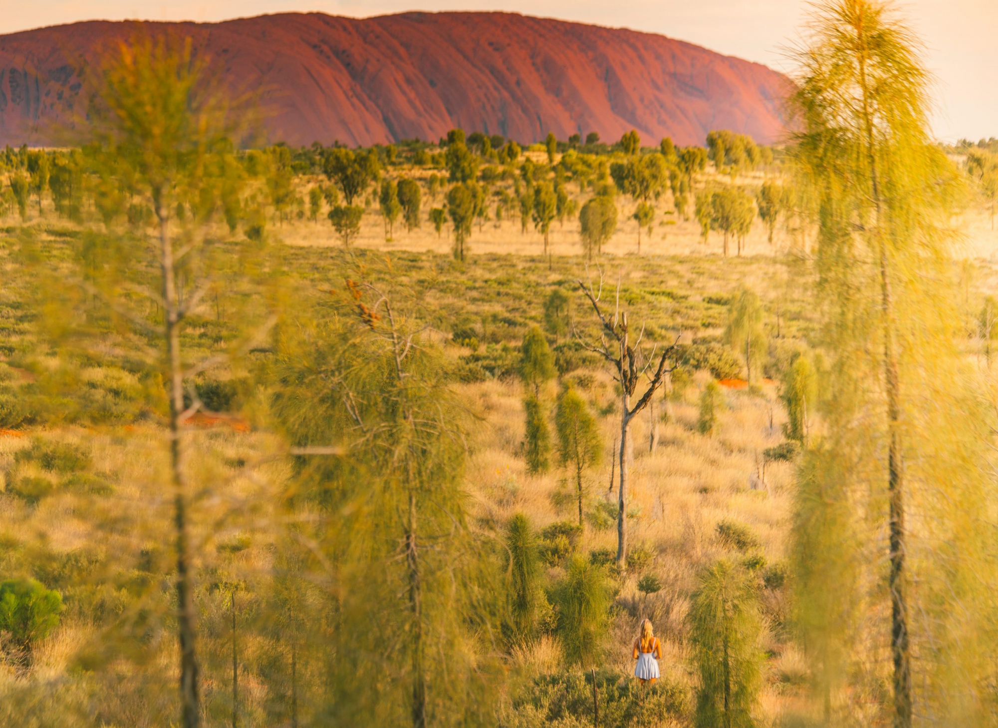Uluru & Kata Tjuta Highlights | Grandness of Uluru, Central Australia, Northern Territory
