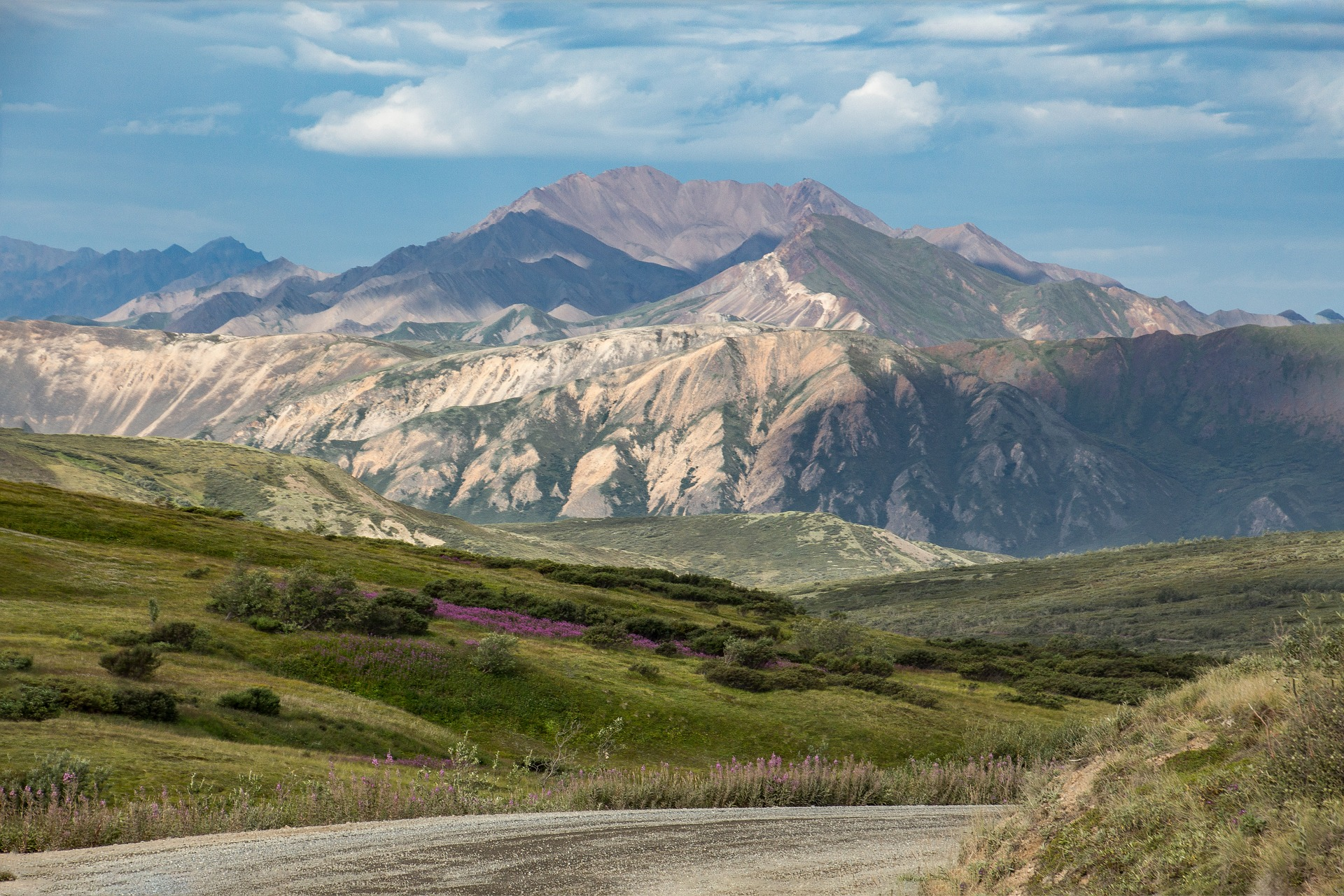 Ultimate Alaska & The Yukon | Denali National Park, Alaska