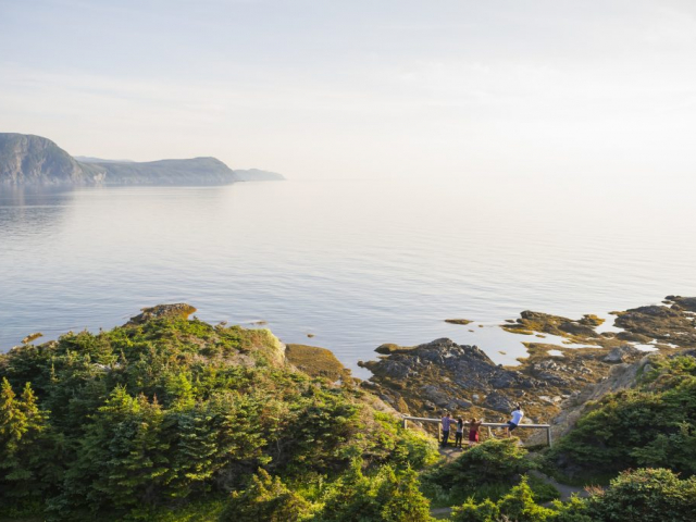 Scenic Wonders of Newfoundland, Labrador & Ile Saint Pierre | Lobster Cove, Gros Morne National Park, Canada