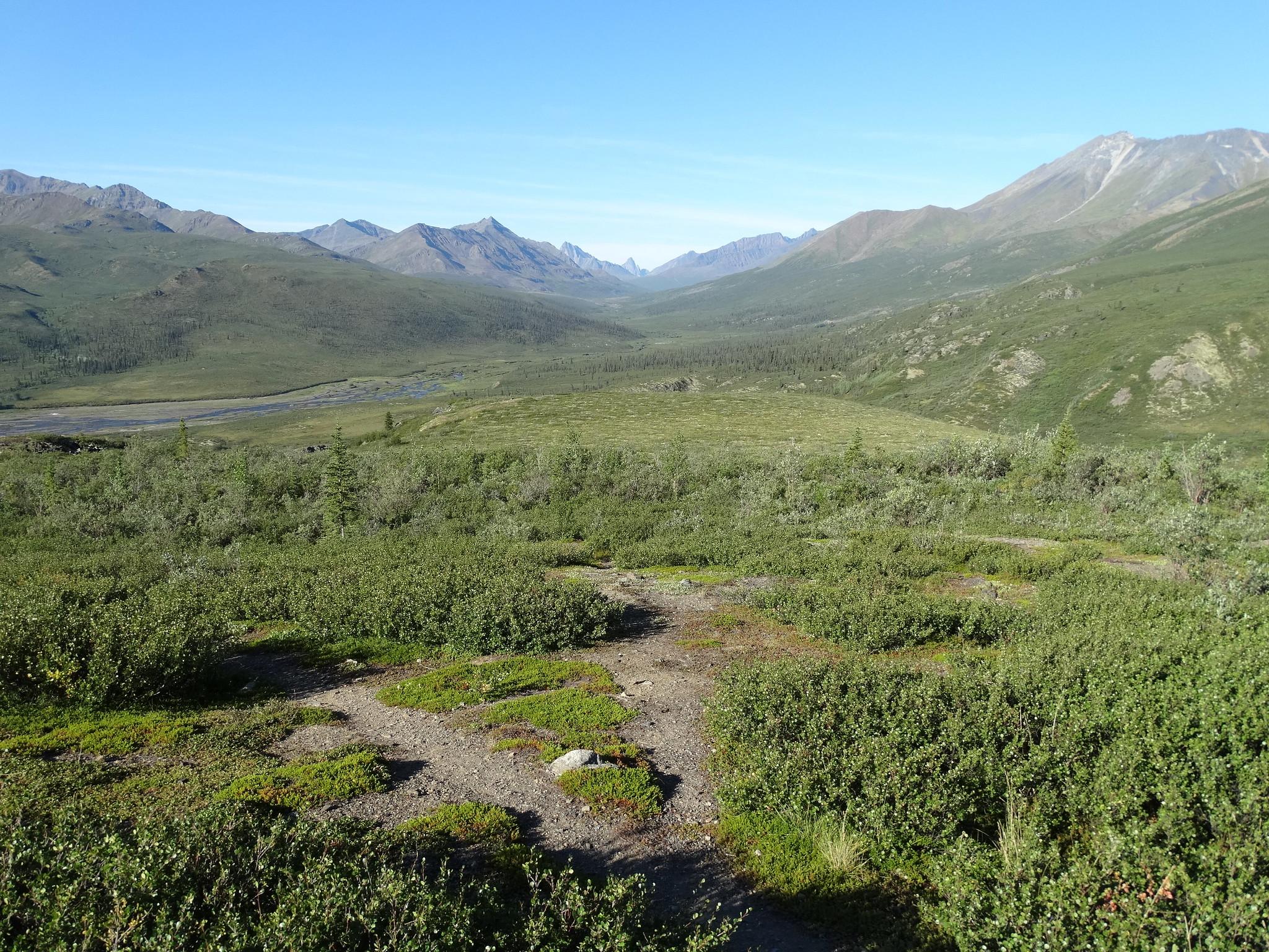 Alaska and the Yukon | Tombstone Territorial Park, Yukon, Canada