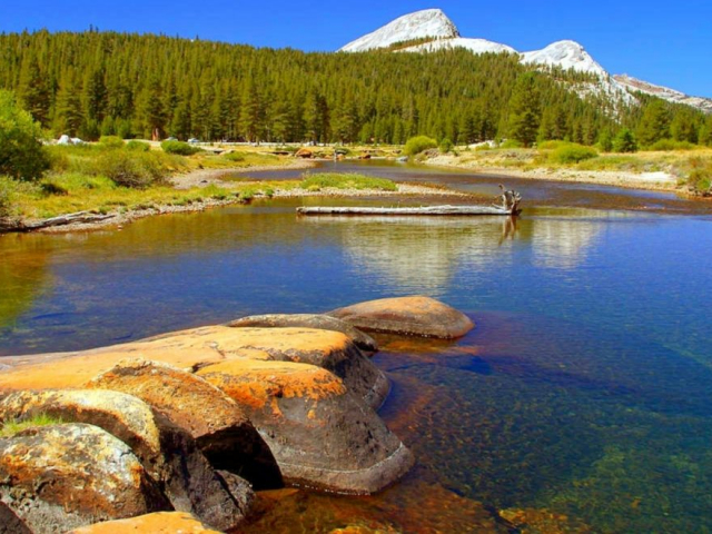 California's Great National Parks | Yosemite Naitional Park, California, USA