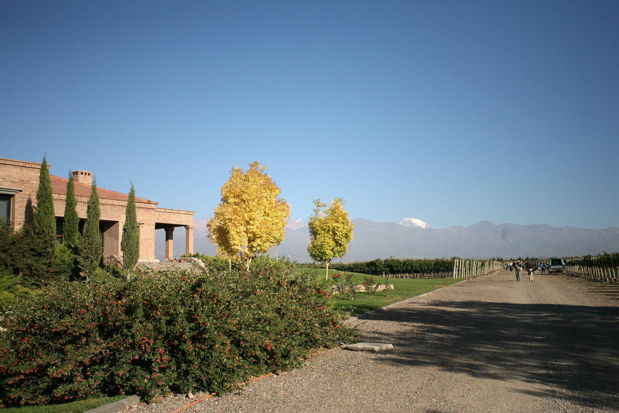 Experience Mendoza | Andeluna Winery, Mendoza, Argentina