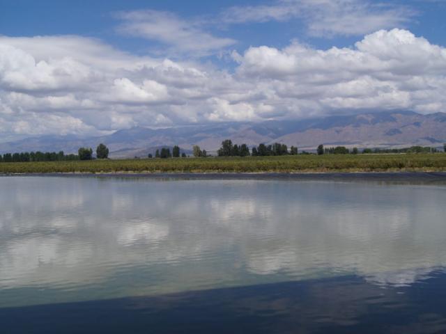 Experience Mendoza | Mendoza, Argentina