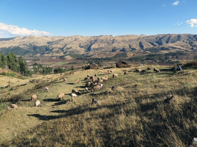 Highlights of Peru | Sacred Valley, Peru