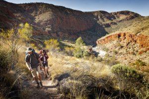 Classic Larapinta Trek in Comfort | Hiking the Larapinta Trail, Red Centre, Northern Territory
