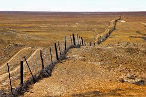 Central to South Explorer | Oodnadatta Track, Dingo Fence, South Australia